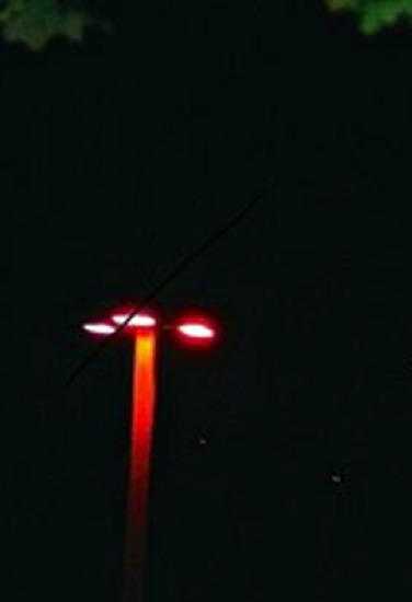 Benjamin Creme's Master confirms that the Milwaukee orange lights were a spaceship from Mars.